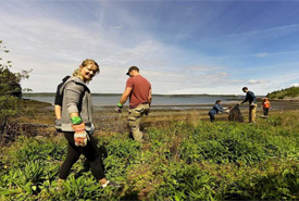 CVs in Musquash Estuary, NB (Photo by NCC)