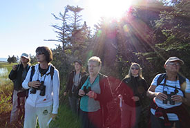 Volunteers with binoculars at Codroy Valley Fall waterfowl Survey, NL (photo by NCC)
