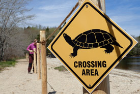 Trail barrier and signage installed to protect snapping turtle habitat at Silver River, NS. (Photo by NCC)