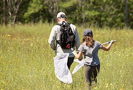 Rice Lake Plains butterfly count (Photo by NCC)