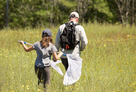Catching butterflies on the Rice Lake Plains, ON (Photo by NCC)