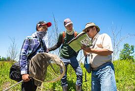 Volunteers ID dragonlfies at Minesing Wetlands (photo by NCC)
