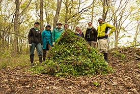 Volunteers removing garlic mustard (photo by Brent Sinclair)