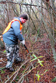 Volunteers cut braches into live stakes for replanting (Photo by Lisa Guthrie)