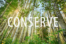 Conserve image (Photo by Kyle Marquardt)