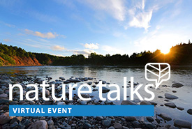 NatureTalks - Virtual Events