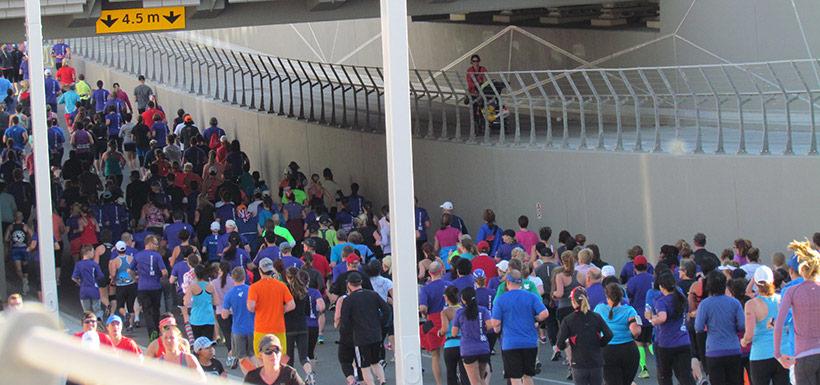 Calgary Marathon 2014, AB (Photo by Nicole Champagne-Ross)