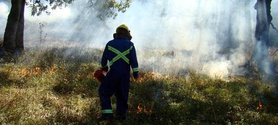 Prescribed burn, Cowichan Garry Oak Preserve, BC (Photo by Thomas Munson)