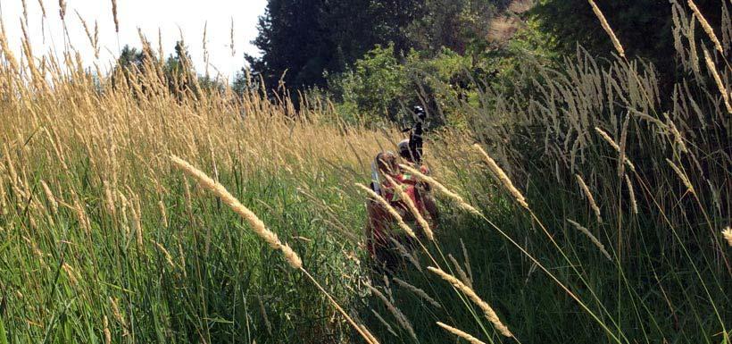 Grassy walk on Midgeley (Photo by Roslyn Johnson)