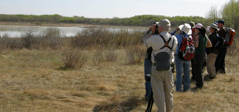 Call of Piping Plover event '08, AB (Photo by NCC)