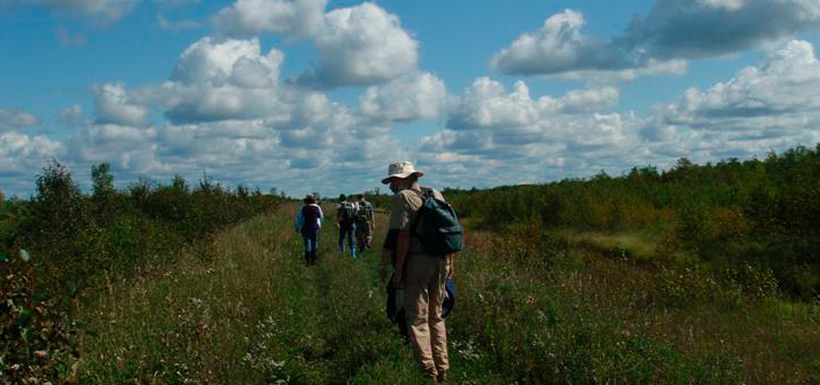Surveying orchids in '08 at Tall Grass Prairie, MB (Photo by NCC)