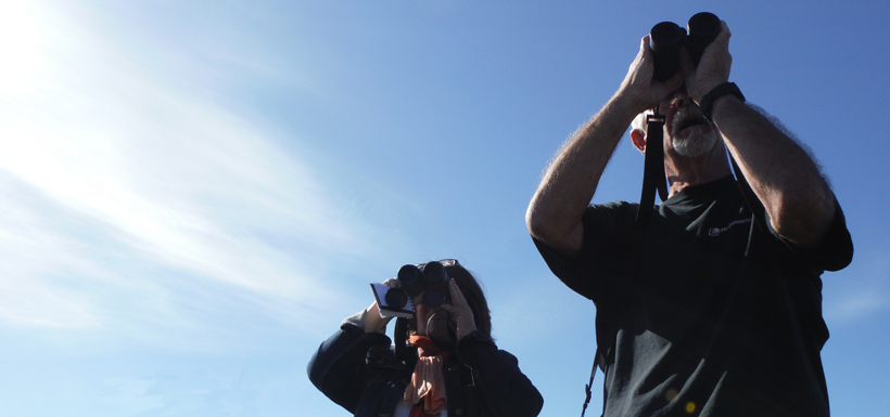 Birders join in on the CV fun. Codroy, NL in 2013 (Photo by NCC)
