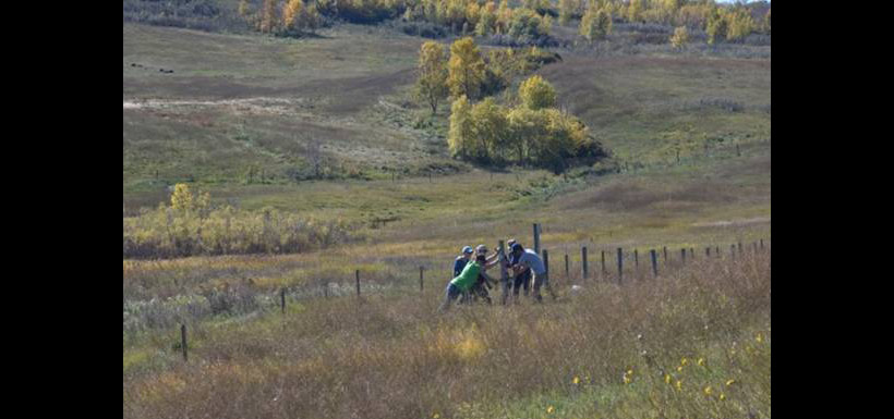 Volunteers doing something positive to keep the land as it is at Fairy Hill, SK (Photo by Gail F. Chin)