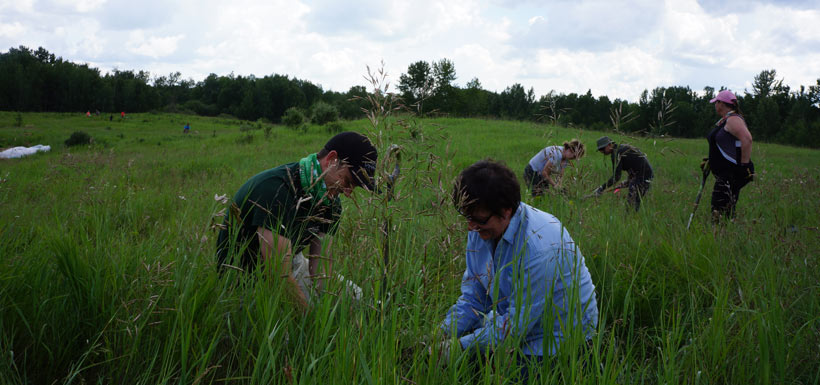 NCC staff Craig Harding and Conservation Volunteer Kim Barkwell hard at work planting native species. (Photo by NCC)