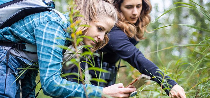 Volunteers capturing species at bioblitz, AB (Photo by Brent Calver)