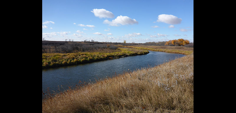 Another section of the Gainsborough Creek on the Ralph Wang Trail, MB (Photo by Ashley Greenley/NCC)