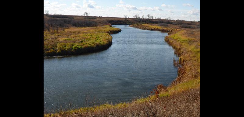 Gainsborough Creek at the Ralph Wang Trail, MB (Photo by Ashley Greenley/NCC)
