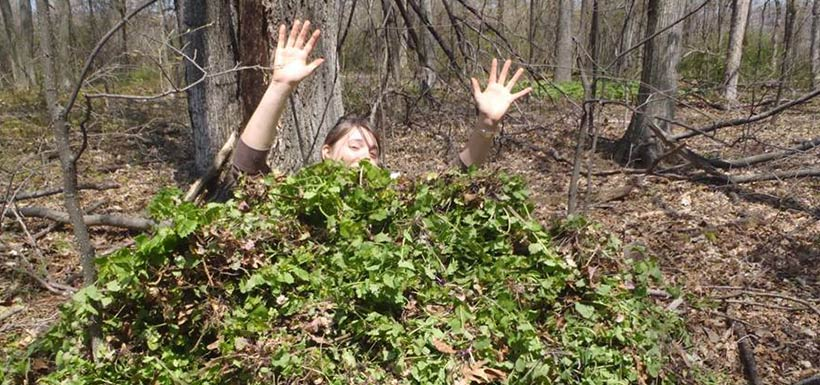 Sometimes, we feel as though we are drowning in invasive plants.... (Photo by NCC)