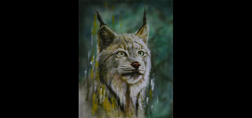 Canada lynx (Painting by David Arrigo)
