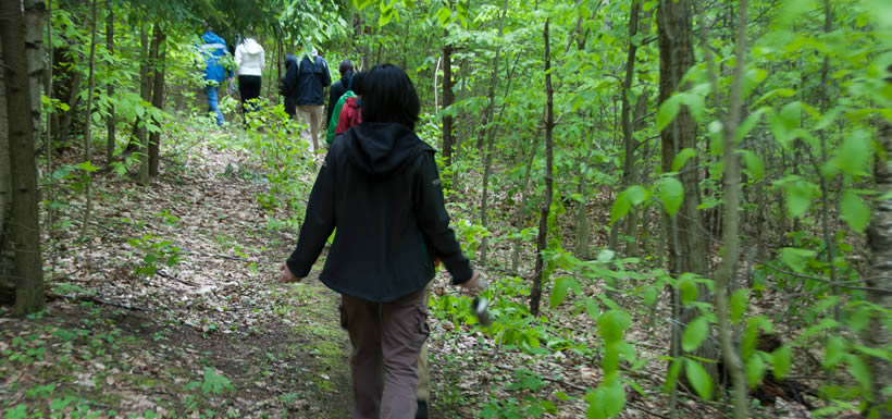 NCC staff hikes through the property, Happy Valley Forest (Photo by NCC)
