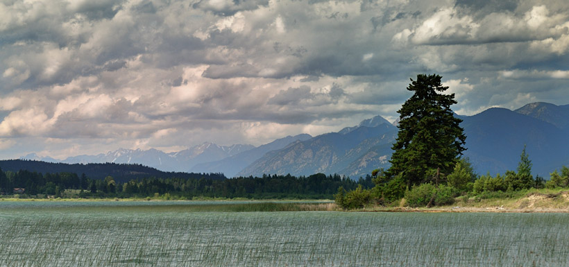 Lot 48, Columbia Lake, BC (Photo by Tim Ennis/NCC)