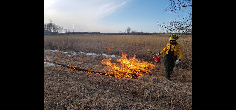 Prescribed fire at the Tall Grass Prairie Preserve, MB (Photo by NCC)