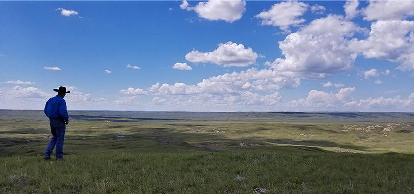 It's not until you stand alone in the prairie that you understand how your presence can be so significant and insignificant at the same time. (Photo by NCC)