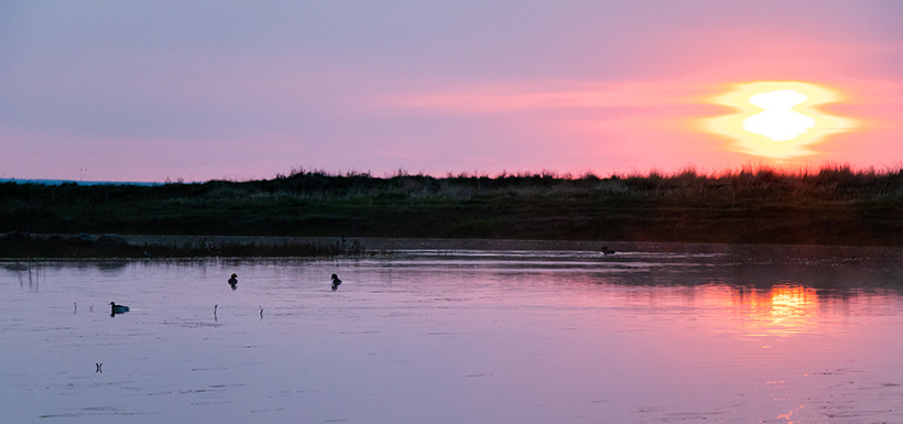 Sunrise at Old Man on His Back Prairie and Heritage Conservation Area, SK (Photo by Cameron Wood/NCC staff)