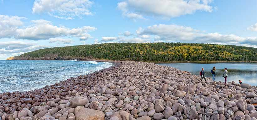 Freshwater Bay (Photo by Dennis Minty)