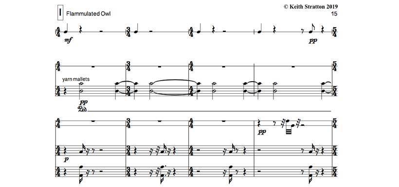 Flammulated owl (Music score excerpt by Keith Stratton)