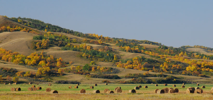 Fairy Hills and hay bales
