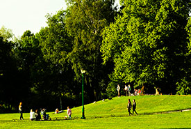 Sunday park (Photo by Konstantin Stepanov)