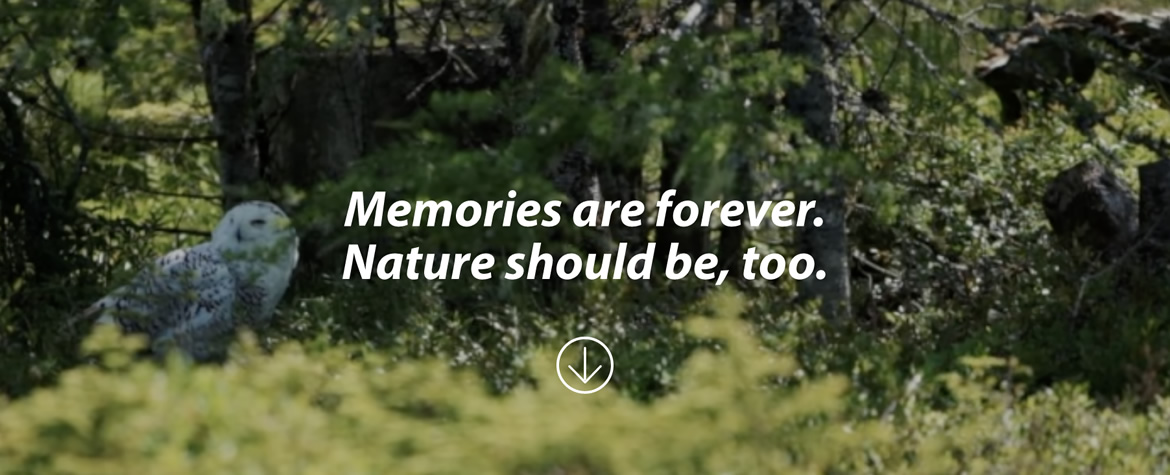 Nature needs you. Join us in the fight to protect our planet.