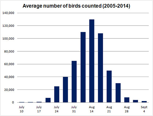 Graph showing average of number birds counted at Johnson's Mills from 2005 to 2014.