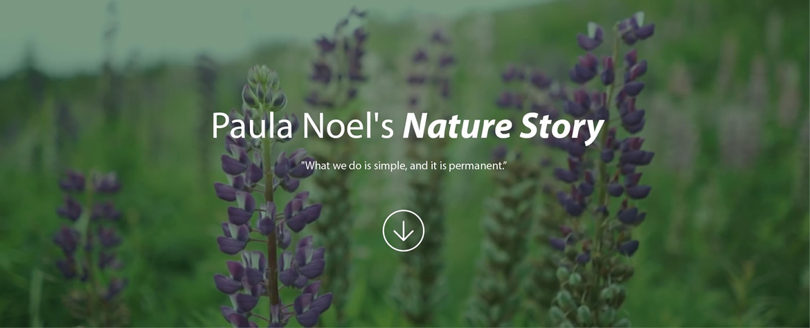 Paula Noël's Nature Story - What we do is simple, and it is permanent.