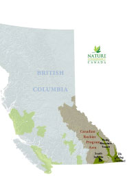 The Canadian Rockies Program priority natural areas (Map by NCC)