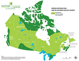 Canadian distribution of Canada lynx (Map by NCC)