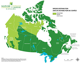 Canadian distribution of grizzly (Map by NCC)