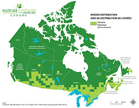 Canadian distribution of Monarchs (Map by NCC)