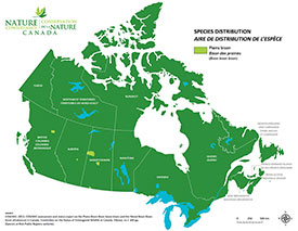Canadian distribution of plains bison (Map by NCC)