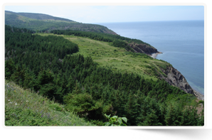Sight Point, NS (Photo by NCC)