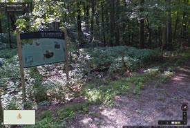 Backus Woods, Ontario (Google Streetsview)