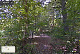 Réserve naturelle Goldie Feldman, Forêt Happy Valley, Ontario (Google Streetsview)