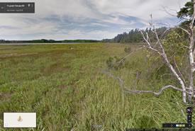 Estuaire de la rivière Pugwash, Nouvelle-Écosse (Google Streetsview)