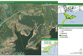 Map of Brighton Wetland. Click to enlarge.