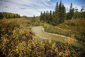 Beaver Hills, Kallal property, AB (Photo by Brent Calver)