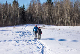 People walking at Bunchberry Meadows