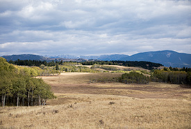 Prentice Property (Photo by Brent Calver)
