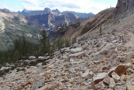 Pika habitat in the Rockies (Photo by Ryan Brown/iNaturalist)