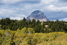 View from Prentice Property (Photo by Brent Calver)